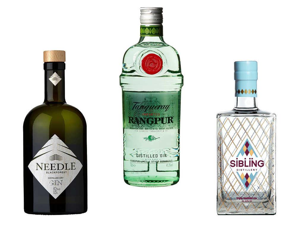 Beispiele für Distilled Gin: Needle Gin, Tanqueray Rangpur, Sibling Gin