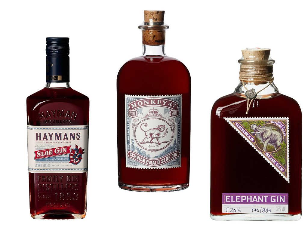 Beispiele für Sloe Gin: Hayman's Sloe Gin, Monkey 47 Sloe Gin & Elephant Sloe Gin