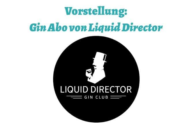 Liquid Director Erfahrungsbericht